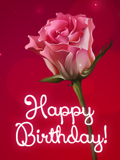 Happy Birthday.rose