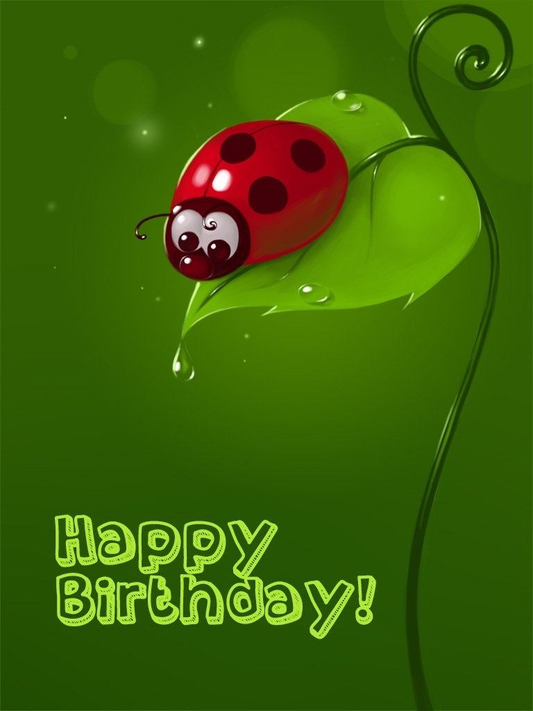 Lady Bug Birthday